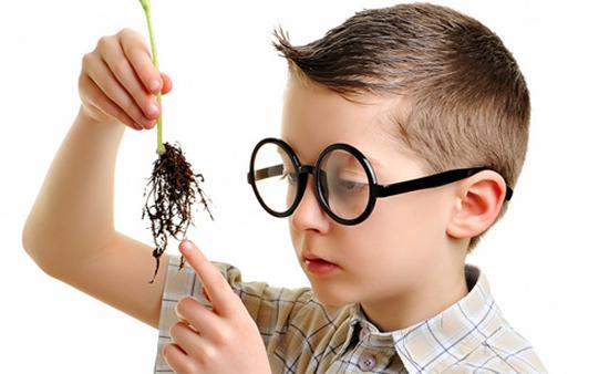 Trẻ Chậm Nói Có Kém Thông Minh hay Có Ảnh Hưởng Gì Không?