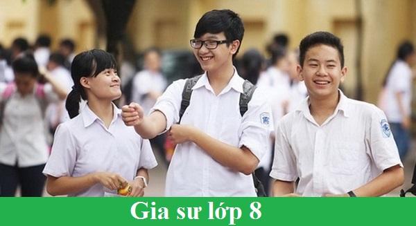 Gia Sư Lớp 8 Tại Hà Nội Nhận Dậy Kèm Các Môn Lớp 8 Uy Tín Tại Hà Nội