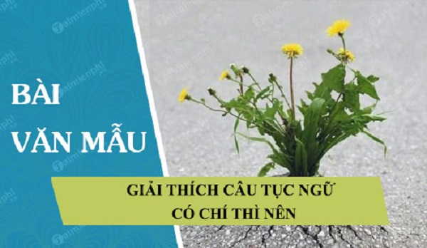 """Bài Văn : Giải Thích Câu Tục Ngữ """"Có Chí Thì Nên"""""""