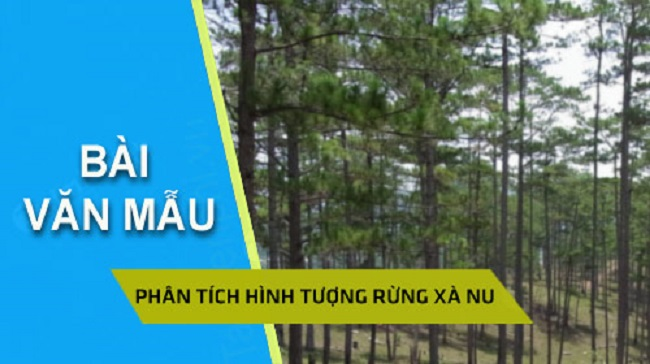 Dàn Ý và Bài Văn Phân Tích Rừng Xà Nu - Nguyễn Trung Thành