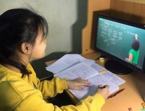 Tư Vấn Gia Sư Online Tiểu Học Uy Tín, Chất Lượng tại Hà Nội