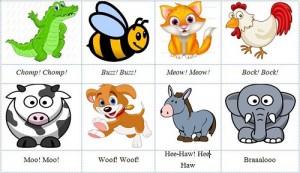 1001+ Tên Các Con Vật Bằng Tiếng Anh Được Trẻ Yêu Thích Nhât