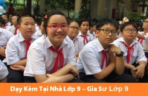 Gia Sư Lớp 9 Tại Nhà Dạy Toán Lý Hóa, Anh, Văn, Thi Cấp 3