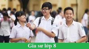 Gia Sư Lớp 8 Tại Hà Nội. Học Phí Gia Sư Toán Lớp 8 Tại Nhà