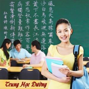 Gia sư tiếng Hoa tại nhà ở Hà Nội, HCM | Bảng giá gia sư 2019