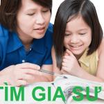 Bạn Có Biết Gia Sư Ở Đâu Tốt Nhất Ở Hà Nội, HCM Hiện Nay?